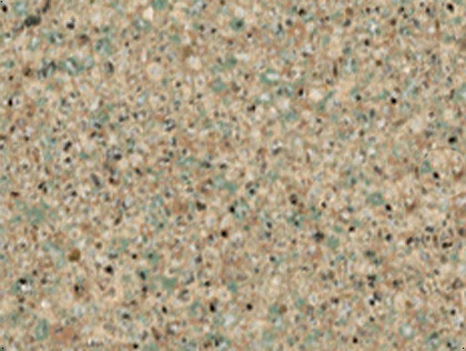 granite quartzite countertops